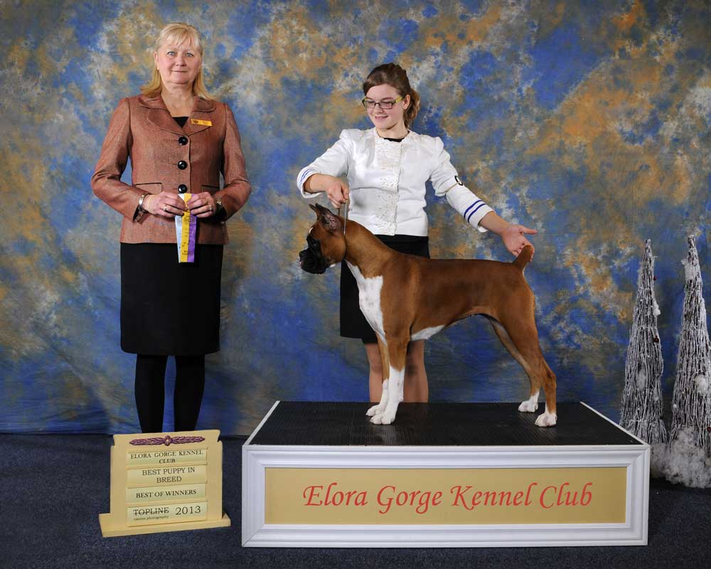 Elora Gorge Kennel Club